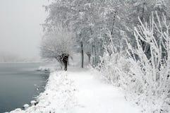 Paisaje holandés de la nieve con el lago y los árboles Fotografía de archivo libre de regalías