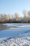 Paisaje holandés de la nieve con el lago y los árboles congelados Foto de archivo libre de regalías