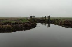 Paisaje holandés en la niebla imágenes de archivo libres de regalías