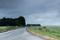 Paisaje holandés, Noordoostpolder cerca de Emmeloord Imagen de archivo