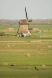 Paisaje holandés típico con el molino de viento Imagen de archivo