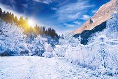 Paisaje idílico del invierno. Eslovenia alpestre Imagen de archivo libre de regalías