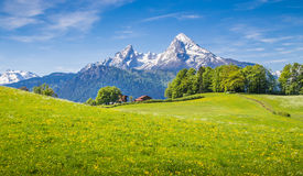 Paisaje idílico en las montañas con los prados verdes frescos Imagen de archivo libre de regalías