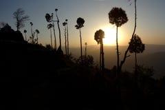 Paisaje ideal místico en la puesta del sol Fotos de archivo