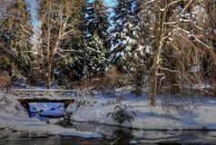 Paisaje II de los inviernos Foto de archivo libre de regalías