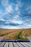 Paisaje imponente del campo de trigo debajo del cielo tempestuoso co de la puesta del sol del verano Foto de archivo