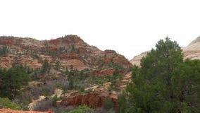 Paisaje increíblemente hermoso en Zion National Park, Washington County, Utah los E.E.U.U. Movimiento liso de la cámara a lo larg metrajes
