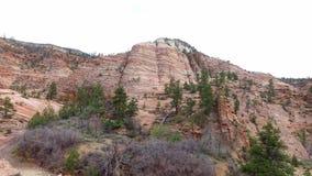 Paisaje increíblemente hermoso en Zion National Park, Washington County, Utah los E.E.U.U. Movimiento liso de la cámara a lo larg almacen de metraje de vídeo