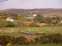 Paisaje irlandés Imagenes de archivo