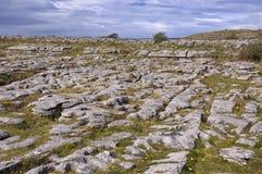 Paisaje irlandés de la piedra caliza Fotografía de archivo libre de regalías