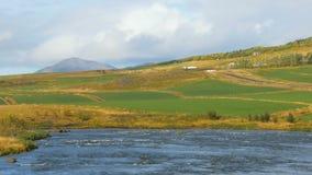 Paisaje islandés asombroso del campo en el día soleado de la caída, montaña, río almacen de video