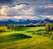 Paisaje islandés colorido con el campo de la hierba verde en el Ju Foto de archivo libre de regalías