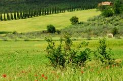Paisaje italiano Fotografía de archivo libre de regalías