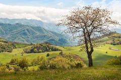 Paisaje italiano hermoso del campo sobre Rolling Hills y B Fotografía de archivo libre de regalías