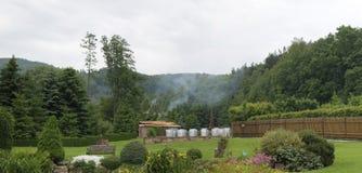 Paisaje (jardín y bosque) Foto de archivo libre de regalías