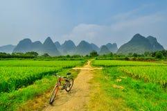 Paisaje lateral de bambú de la montaña del karst del río hermoso de Li en Yangshuo Guilin Fotografía de archivo libre de regalías