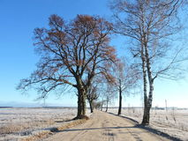 Paisaje lituano de la primavera Imagen de archivo libre de regalías