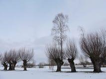Paisaje lituano del invierno Imagen de archivo