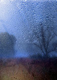 Paisaje lluvioso del otoño a través de una ventana con las gotas de agua Imagenes de archivo
