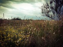 Paisaje místico por la costa de Francia meridional foto de archivo