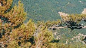 Paisaje magnífico de montañas crimeas cerca de Yalta almacen de metraje de vídeo