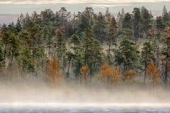 Paisaje magnífico del otoño con el río y el bosque brumoso Fotos de archivo