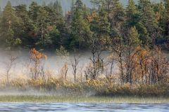 Paisaje magnífico del otoño con el río y el bosque brumoso Imagenes de archivo