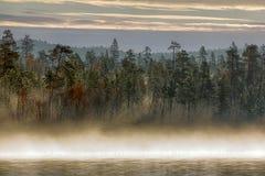 Paisaje magnífico del otoño con el río y el bosque brumoso Fotos de archivo libres de regalías