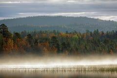 Paisaje magnífico del otoño con el río y el bosque brumoso Fotografía de archivo