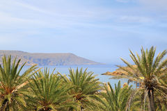 Paisaje marino con el cielo azul, el mar y los árboles foto de archivo libre de regalías