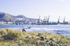 Paisaje marino con las piedras Mar y ondas azules Terraplén y faro Imagenes de archivo