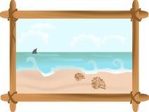 Paisaje marino con los shelles Imagen de archivo