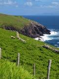 Paisaje marino costero escénico irlandés vibrante Imagenes de archivo