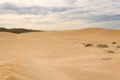 Paisaje marino del área de Addo Elephant National Park, Suráfrica imágenes de archivo libres de regalías