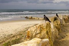 Paisaje marino en Caesarea Fotografía de archivo libre de regalías
