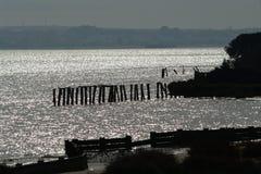 Paisaje marino en Doñana imagen de archivo libre de regalías