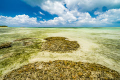 Paisaje marino en la isla de Taketomi de Okinawa Fotografía de archivo libre de regalías