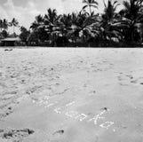 Paisaje marino hermoso en el mar azul en aire abierto con la arena amarilla imagenes de archivo
