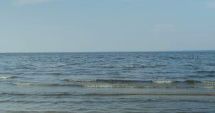 Paisaje marino, mar y cielo almacen de video