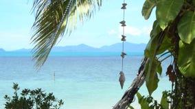 Paisaje marino tropical con Shell Garland almacen de video