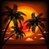 Paisaje marino tropical de la puesta del sol con el ejemplo del vector de las palmeras stock de ilustración