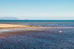 Paisaje marino y costa costa escocesa, Reino Unido Fotos de archivo libres de regalías