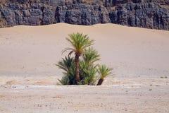 Paisaje marroquí Imagenes de archivo