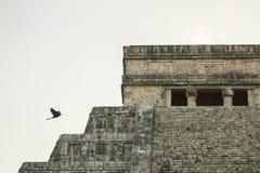 Paisaje maya Fotografía de archivo