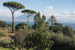 Paisaje mediterráneo con el Mt vesuvius foto de archivo libre de regalías