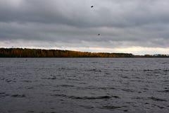 Paisaje melancólico del otoño cerca del río Imágenes de archivo libres de regalías