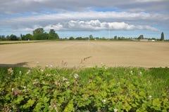 Paisaje meridional de la agricultura de la Columbia Británica imágenes de archivo libres de regalías