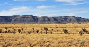 Paisaje meridional de New México Fotografía de archivo