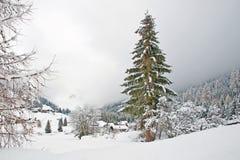 Paisaje montañoso cubierto en nieve Foto de archivo