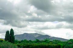 Paisaje montañoso del italiano Toscano Colinas sembradas con las vides imágenes de archivo libres de regalías